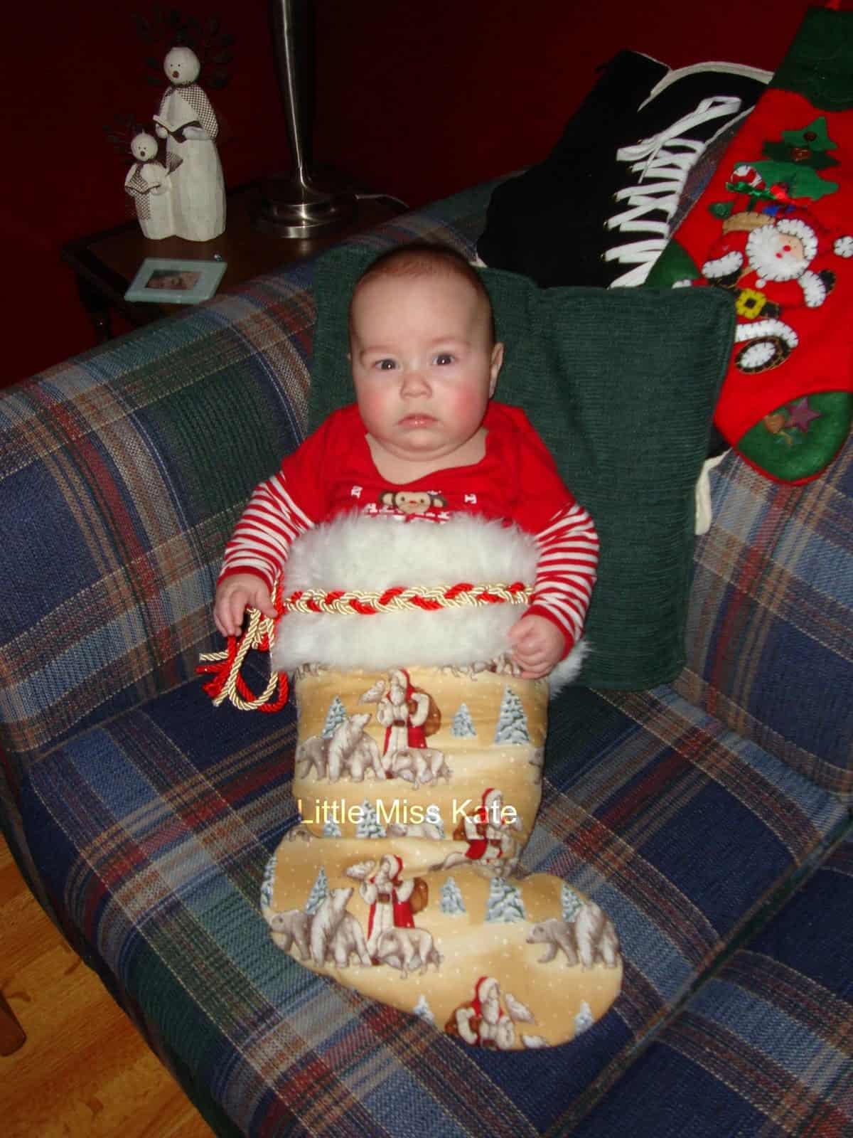 Christmas20101