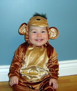 Monkey Costume for toddler