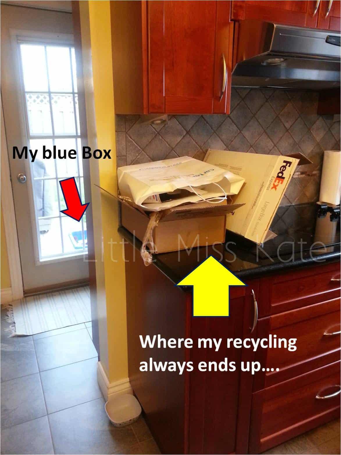 Hidden Recycler 4
