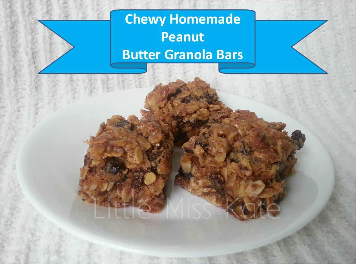 Homemade Peanut Butter Raisin Granola Bar Recipe