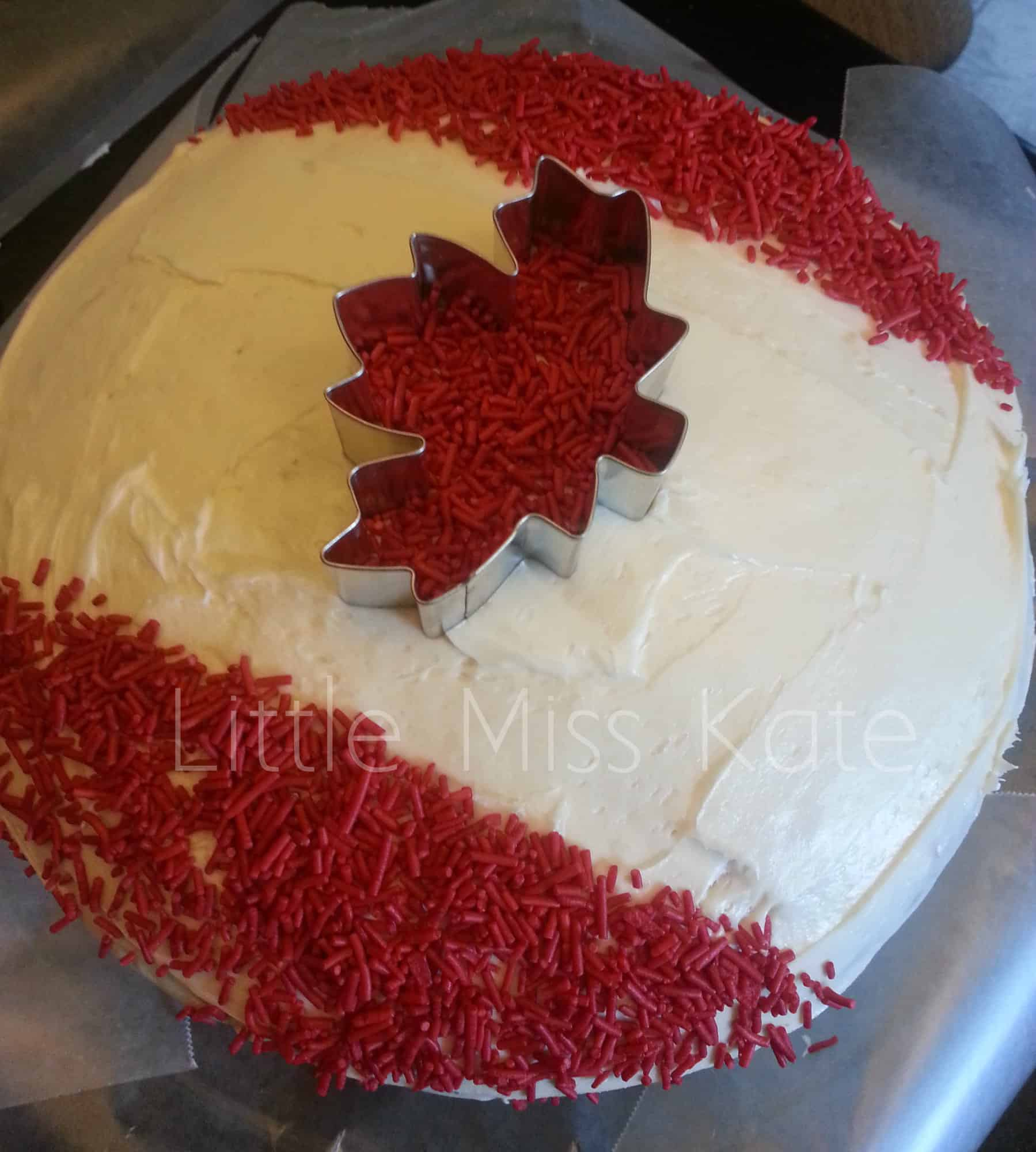 canada day cake 2