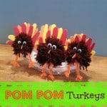 Easy Thanksgiving Craft: Pom Pom Turkey Centerpiece