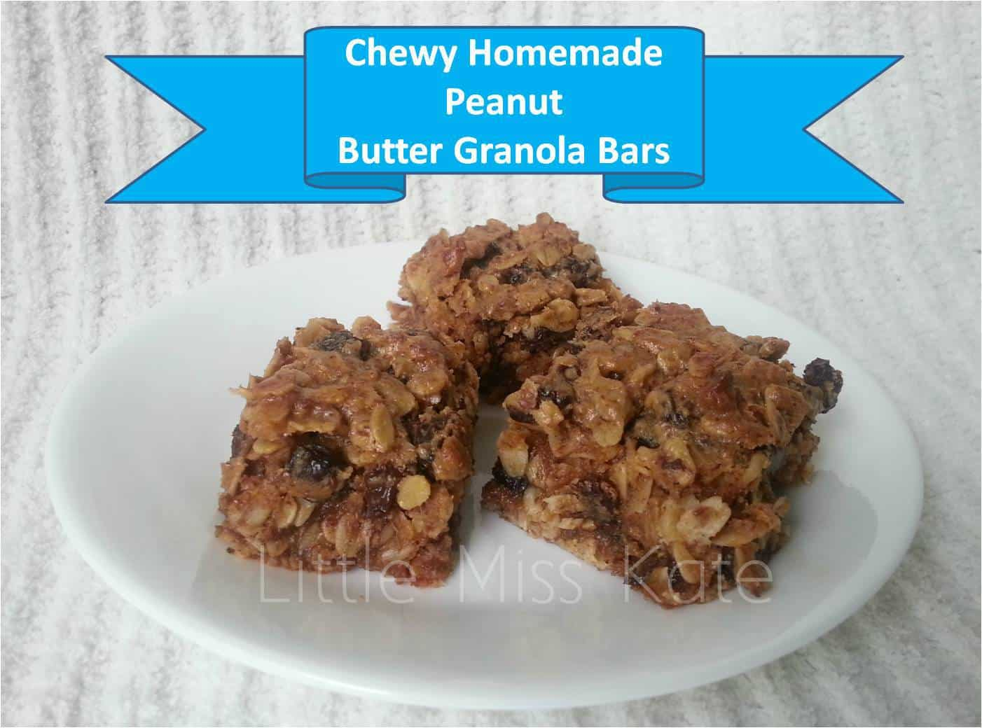 Peanut Butter Rasin Granola Bar