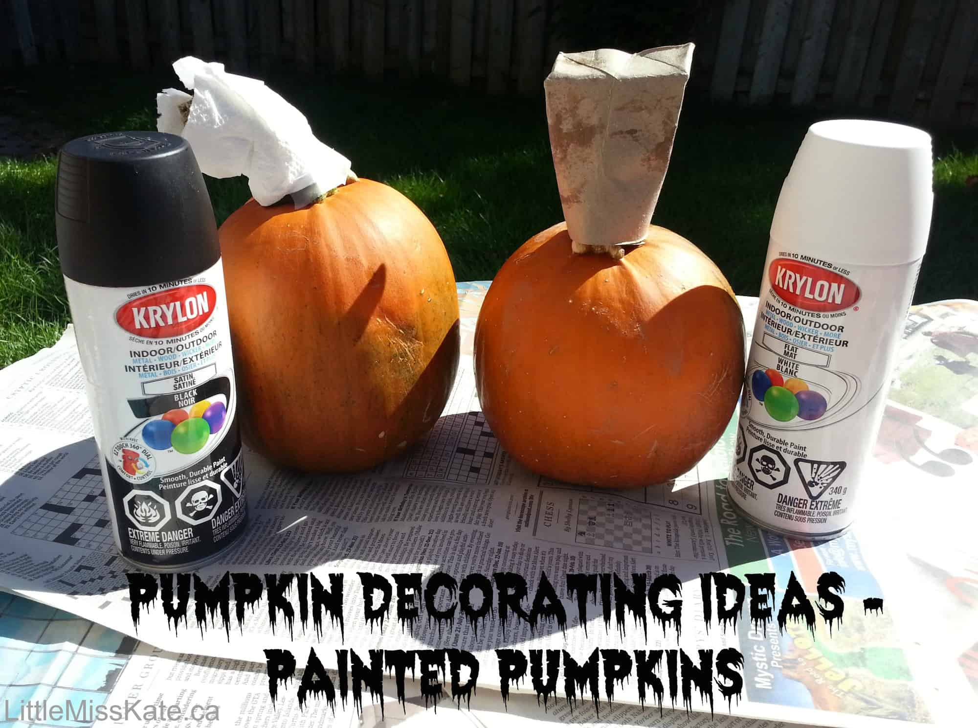 Pumpkin Decorating Ideas Painted Pumpkins Little Miss Kate