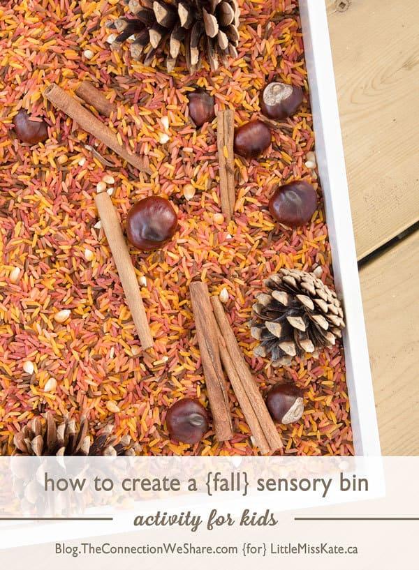 How to Create A Fall Colored Rice Sensory Bin