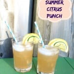 Homemade Summer Citrus Punch Recipe #SpringforCitrus