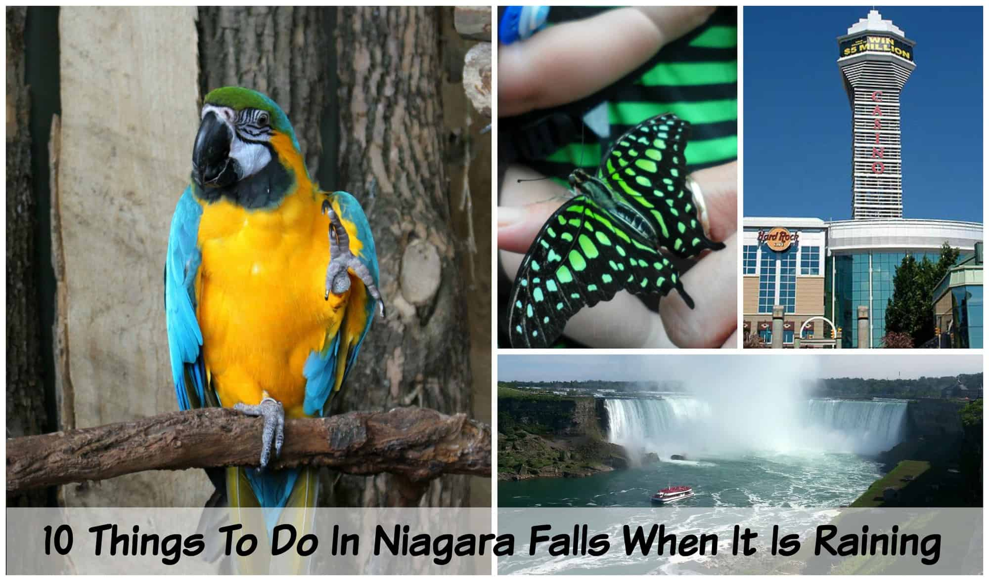 10 things to do in niagara falls when it is raining little miss kate solutioingenieria Choice Image