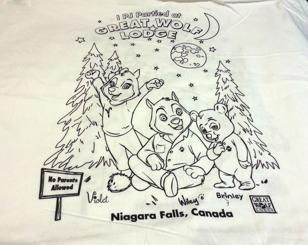 great wolf lodge PJ party pillow case