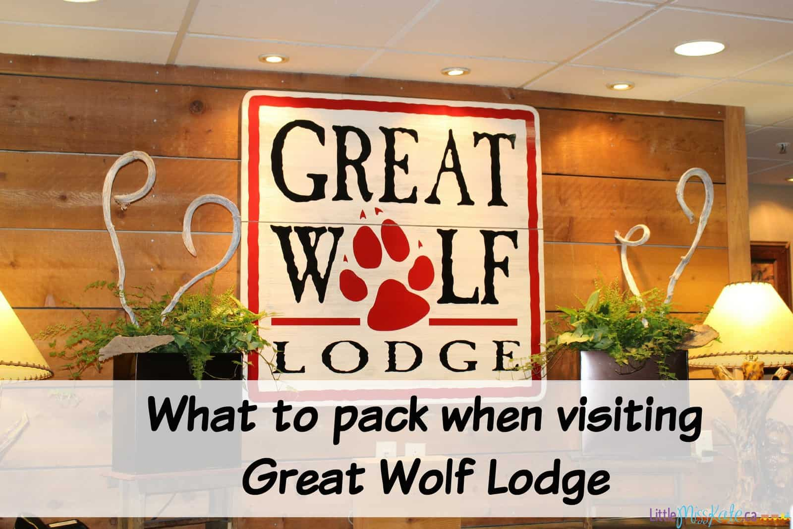 What to pack when visiting great wolf lodge niagara falls