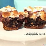 Easy Chocolate Caramel S'more Brownies