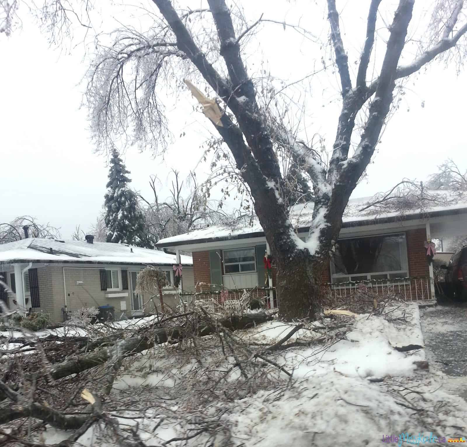 Ice-storm-2013-emergency-preparedness-kit-3