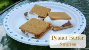 Peanut Butter S'mores by Little Miss Kate