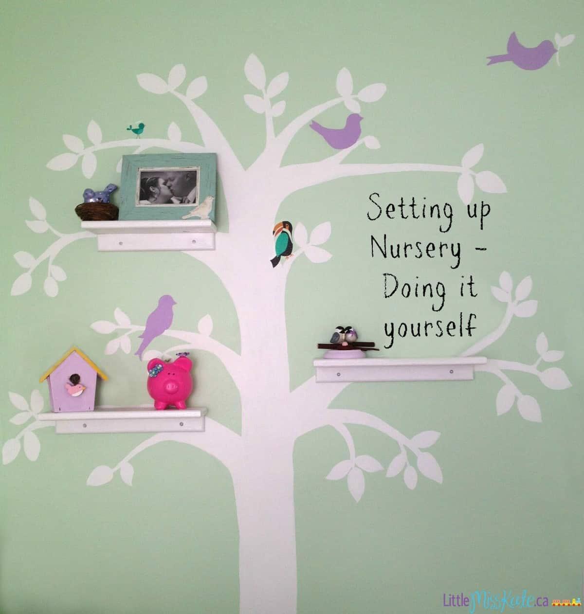 Setting up Nursery – Doing it Yourself