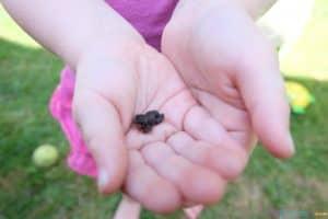 10 Fun & Easy Summer Activities for Kids