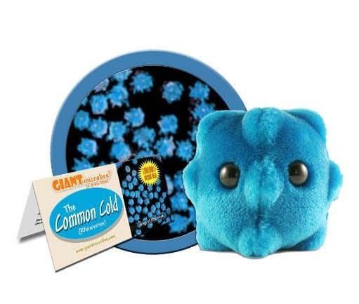 science Gift Ideas for 8 Year Old boys - Giant Microbes