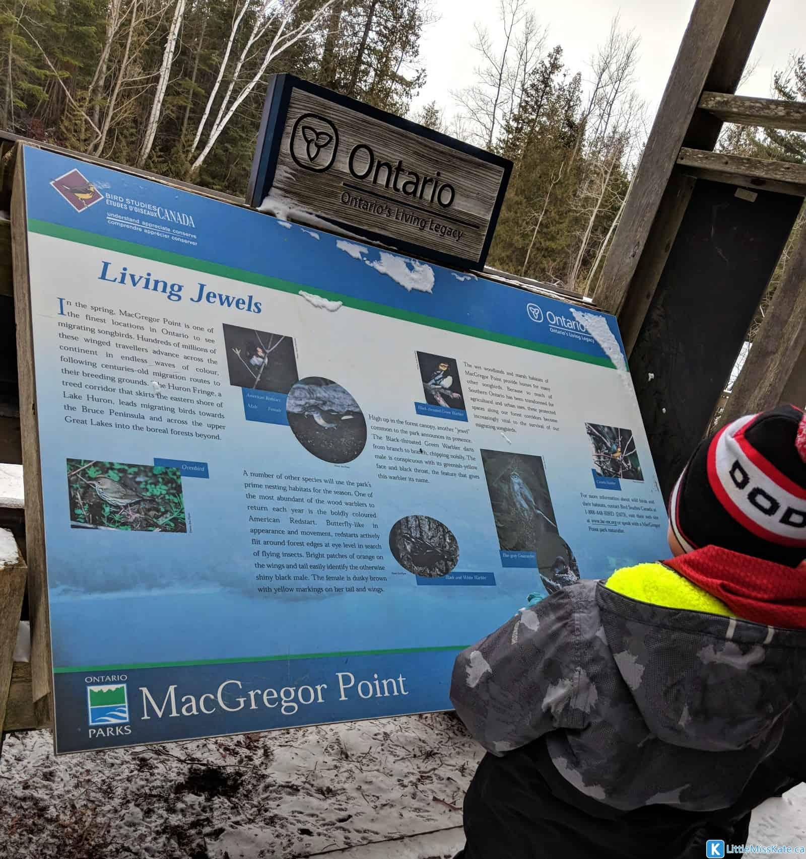 macgregor point provincial park hiking trails