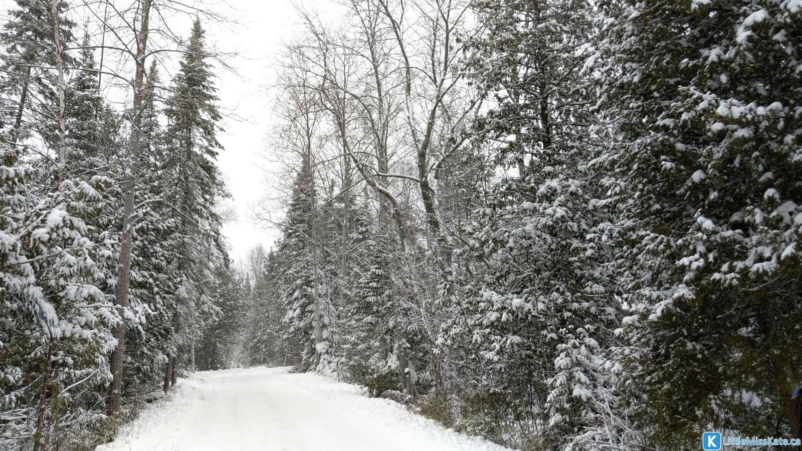 Best winter camping in Ontario MacGregor Point Ontario Parks