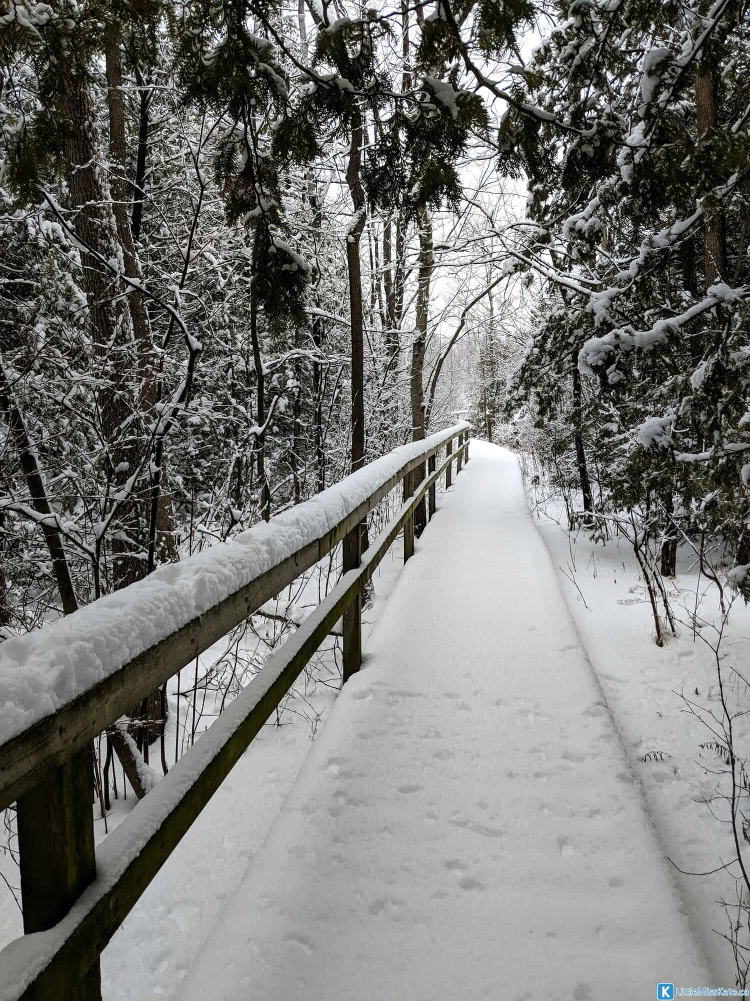 macGregor Point Provinical Park boardwalk winter hiking