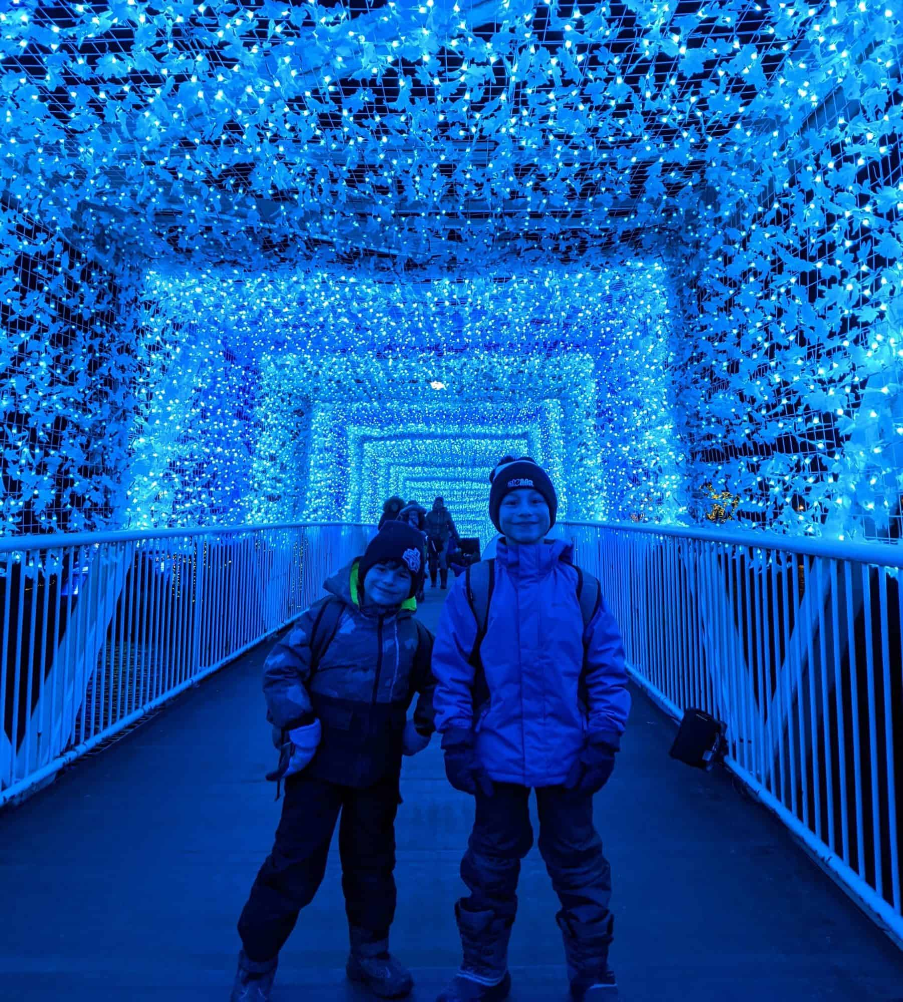 Hotel X family packages aurora winter festival
