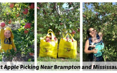 Best Apple Picking Near Brampton and Mississauga – Updated 2020